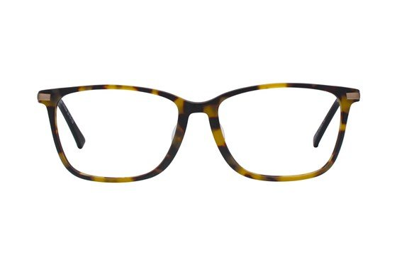 Westend Powell Comfort Fit Tortoise Glasses