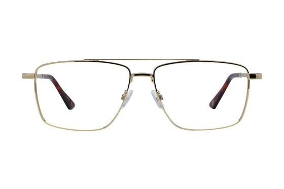 Hackett London Large Fit HEK1206 Gold Glasses