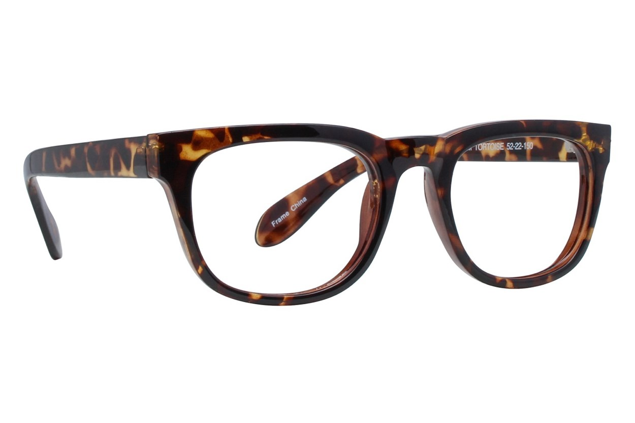 Affordable Designs Folsom Tortoise Glasses