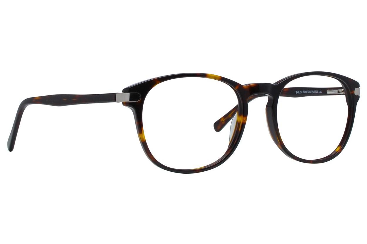 Brooklyn Heights Shiloh Tortoise Glasses