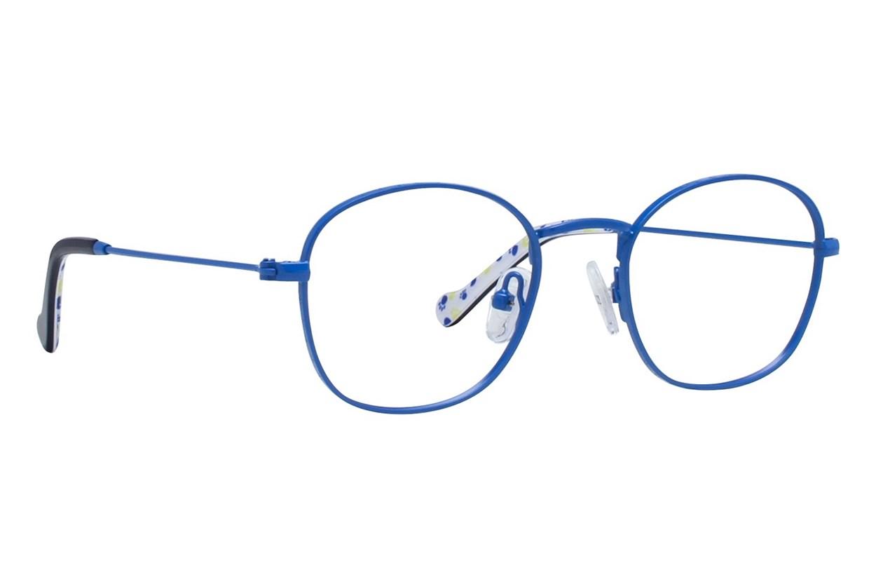 Picklez Dudley Blue Glasses
