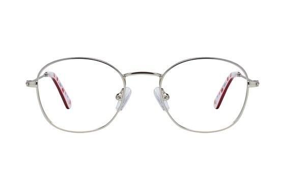 Picklez Dudley Silver Glasses