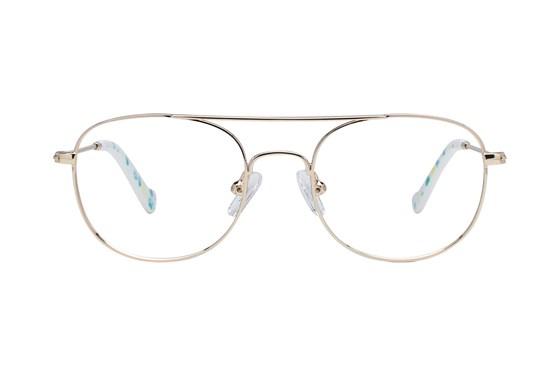 Picklez Ernie Gold Glasses