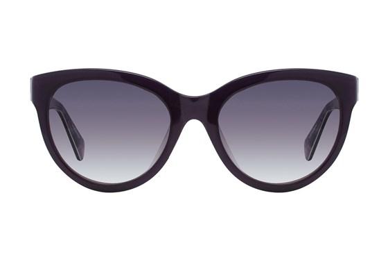 Moda 102 Purple Sunglasses