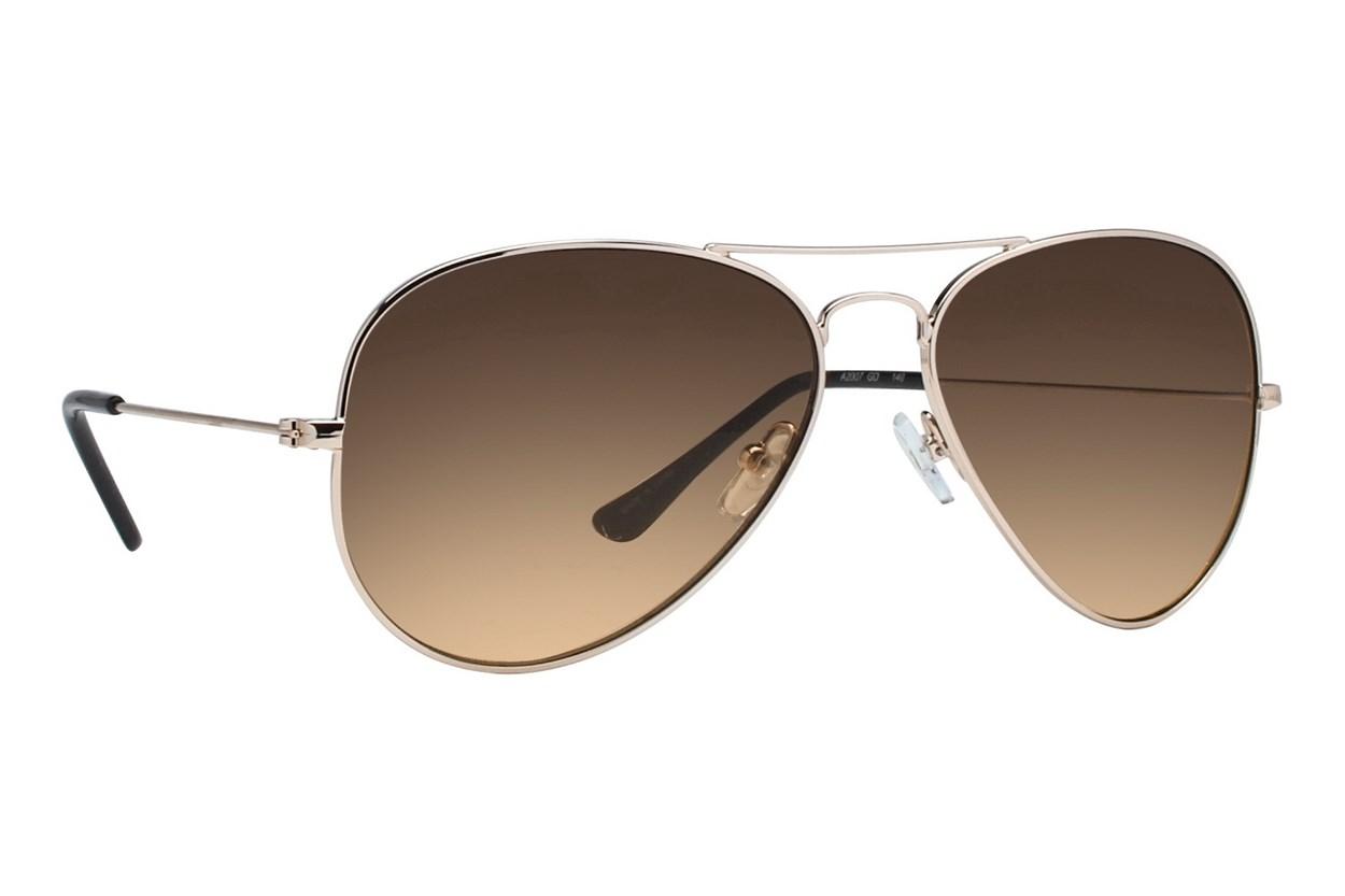 DNA 2007 Gold Sunglasses