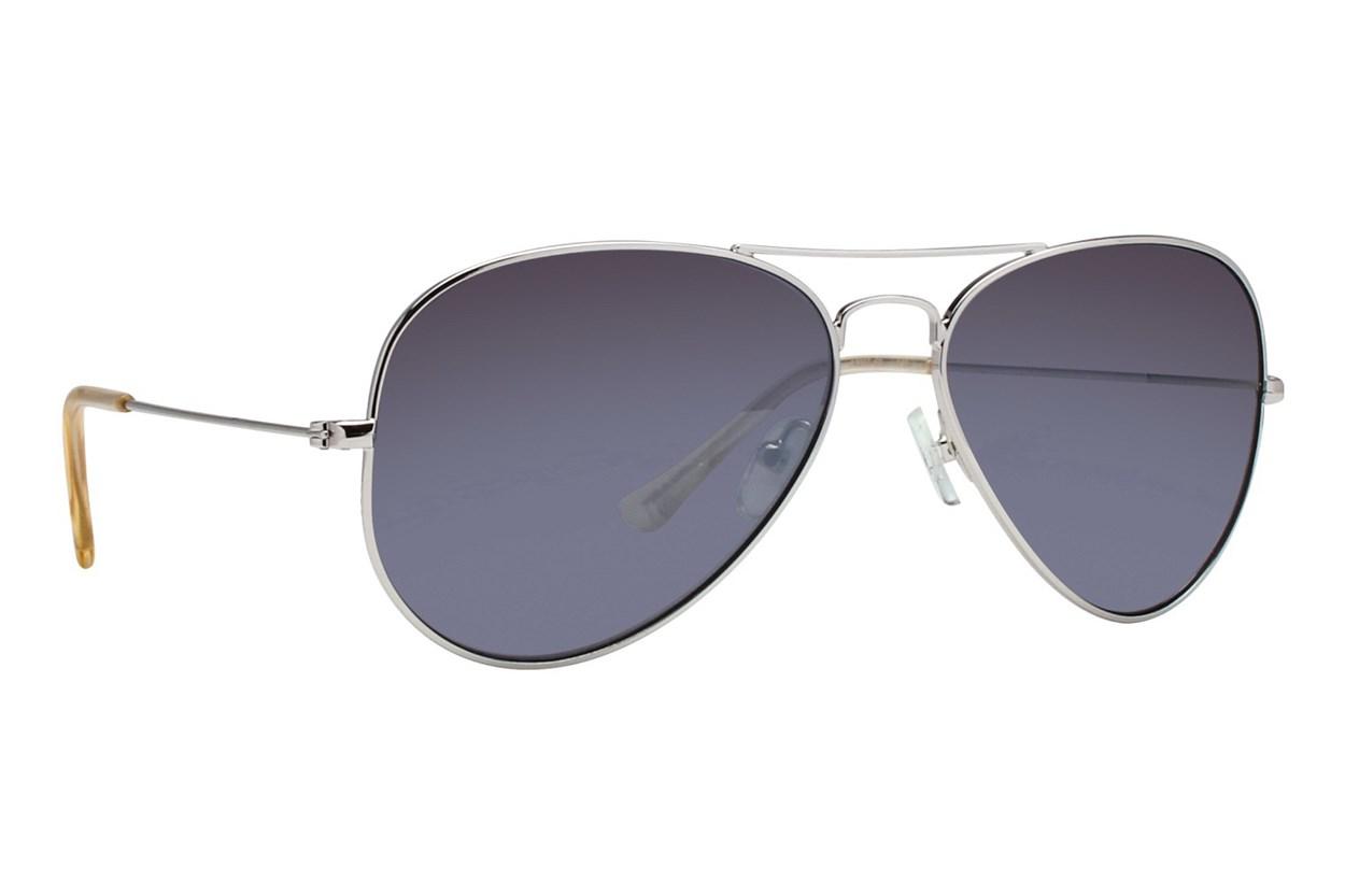 DNA 2007 Silver Sunglasses